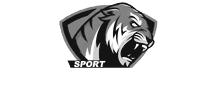 Intermedia Sport